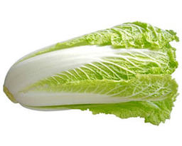A16 : LONG CABBAGE ( KUBIS PANJANG) 1 pc