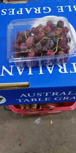 F14 : AUSTRALIA SEEDLESS GRAPE  500G Box