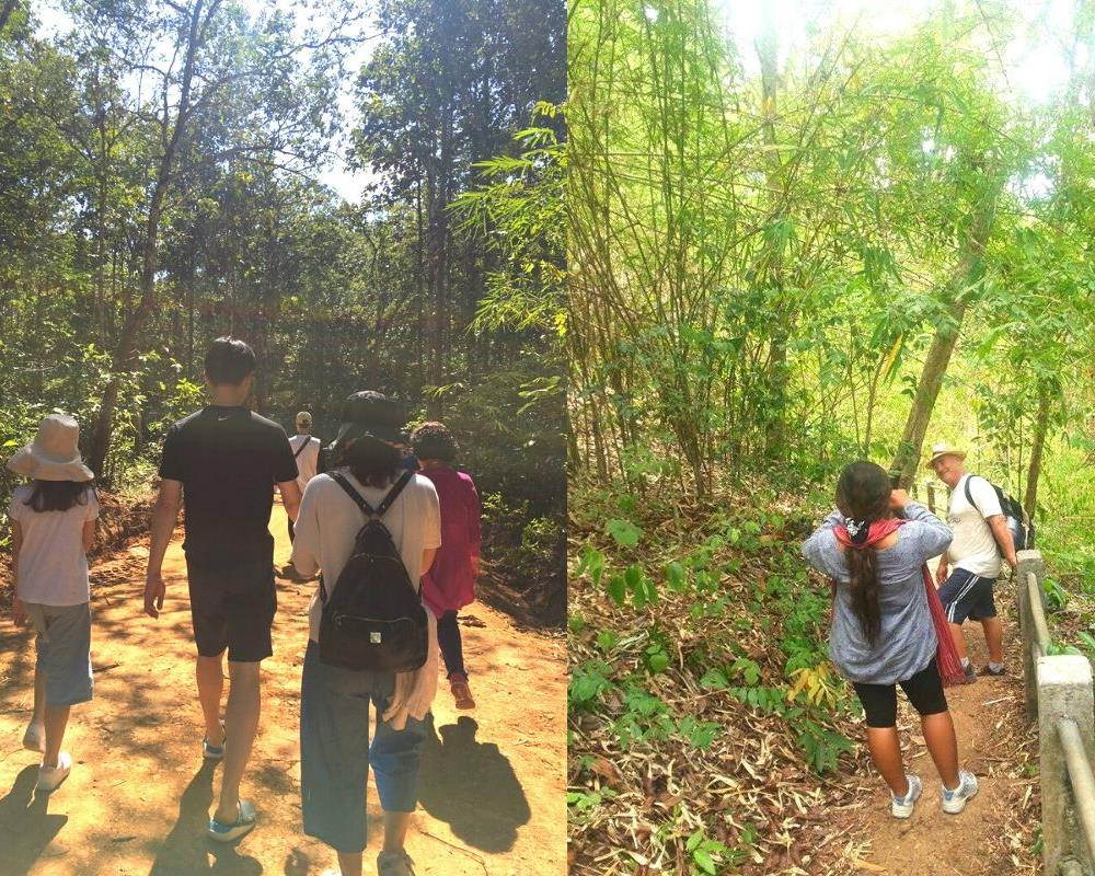 Trek Tour One Day in Mae Wang - Sanpatong (Private Tour)