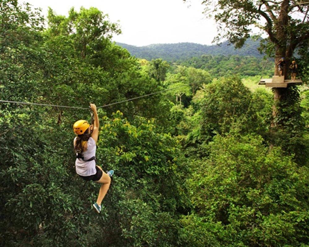 Flight of the Gibbon Chiang Mai