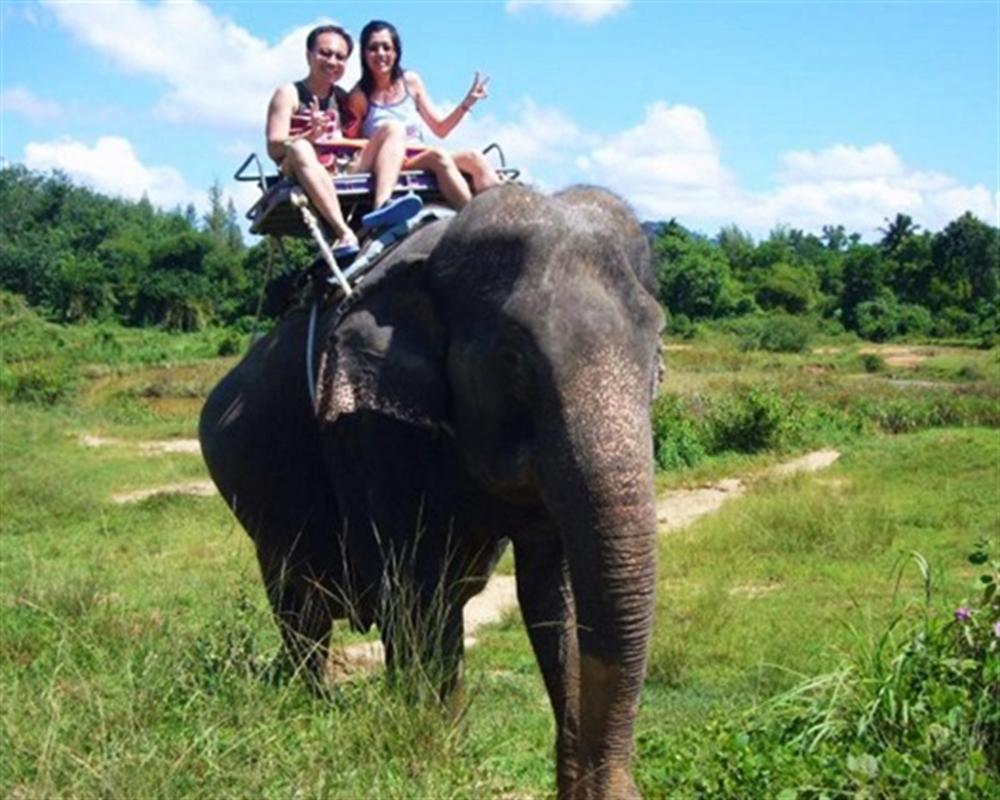 Elephant Trekking Koh Chang