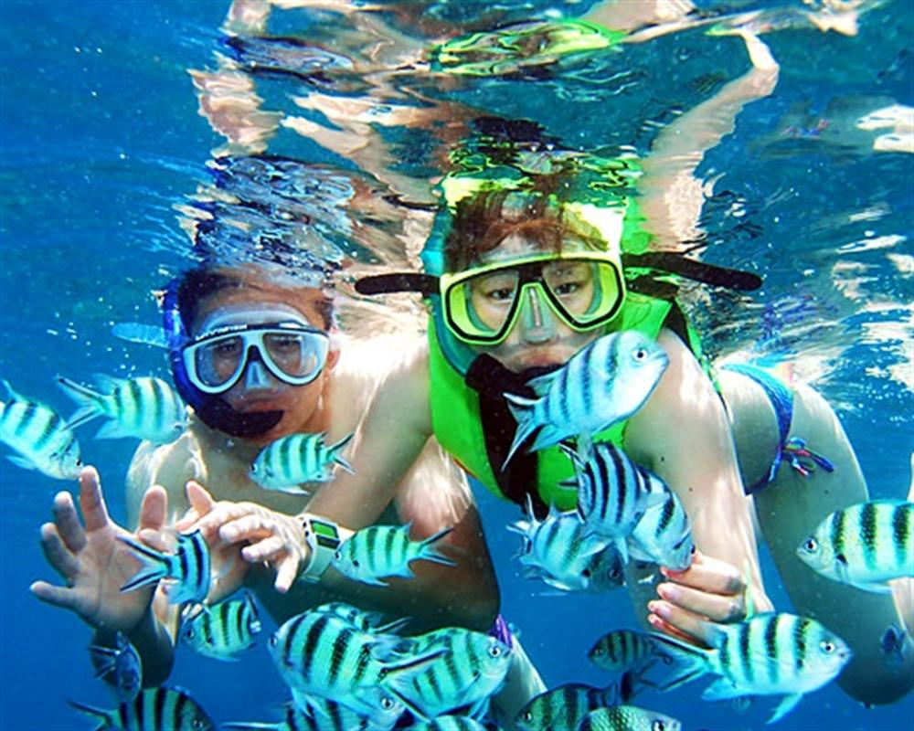 Koh Chang Snorkeling