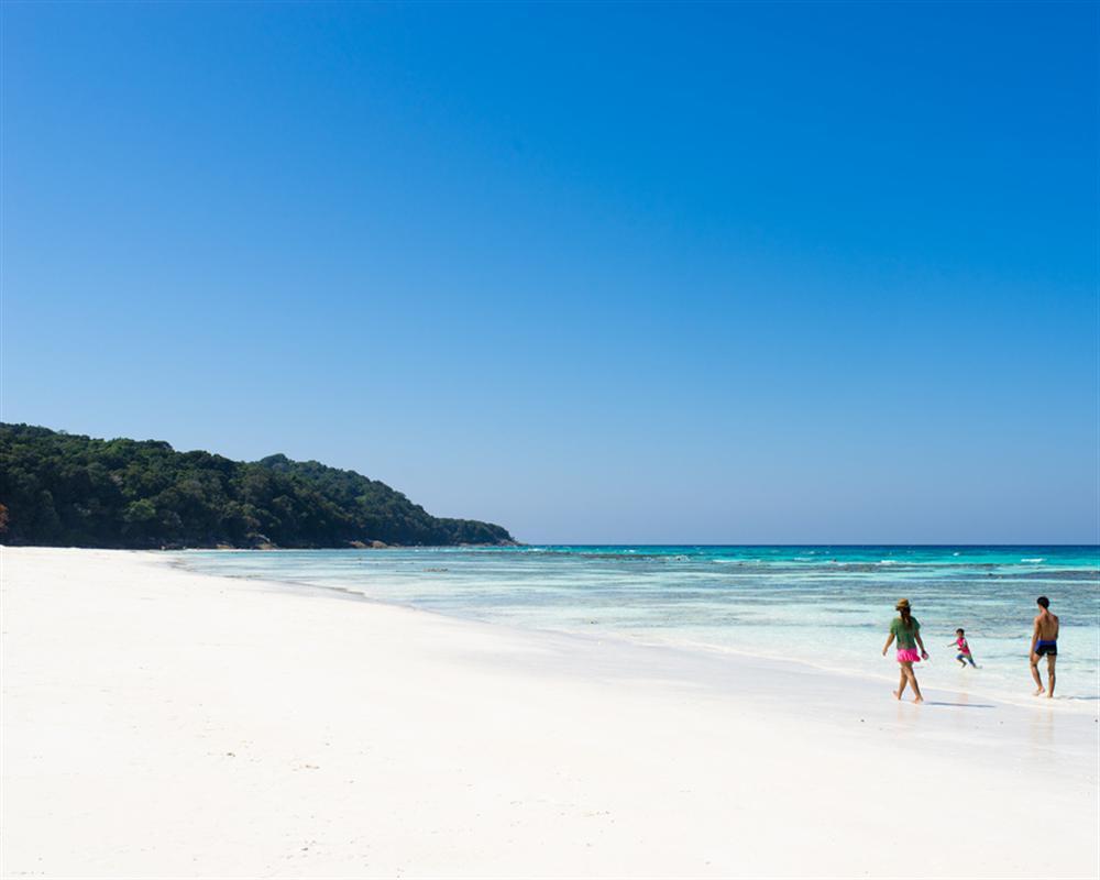 Similan + Tachai Island Tour by Speedboat