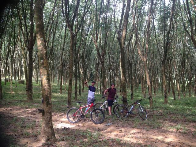 Jungle Cycling Tour Around Krabi
