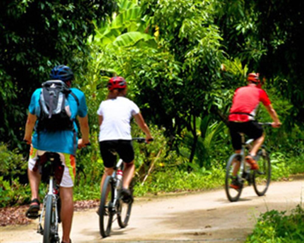 Bang Kra Jao and Jungle Cycling Adventure Tour