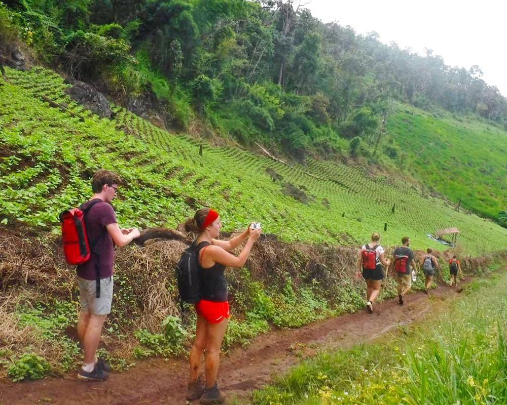 One Day Jungle Trekking Mae Hong Son