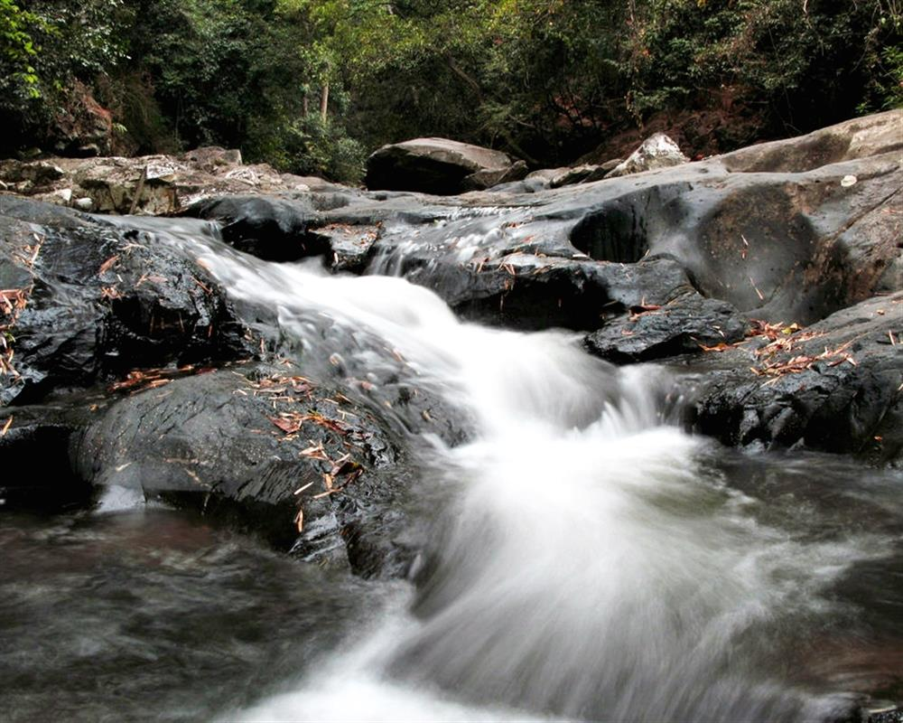 Pala U Waterfall Kaeng Krachan National Park Tour