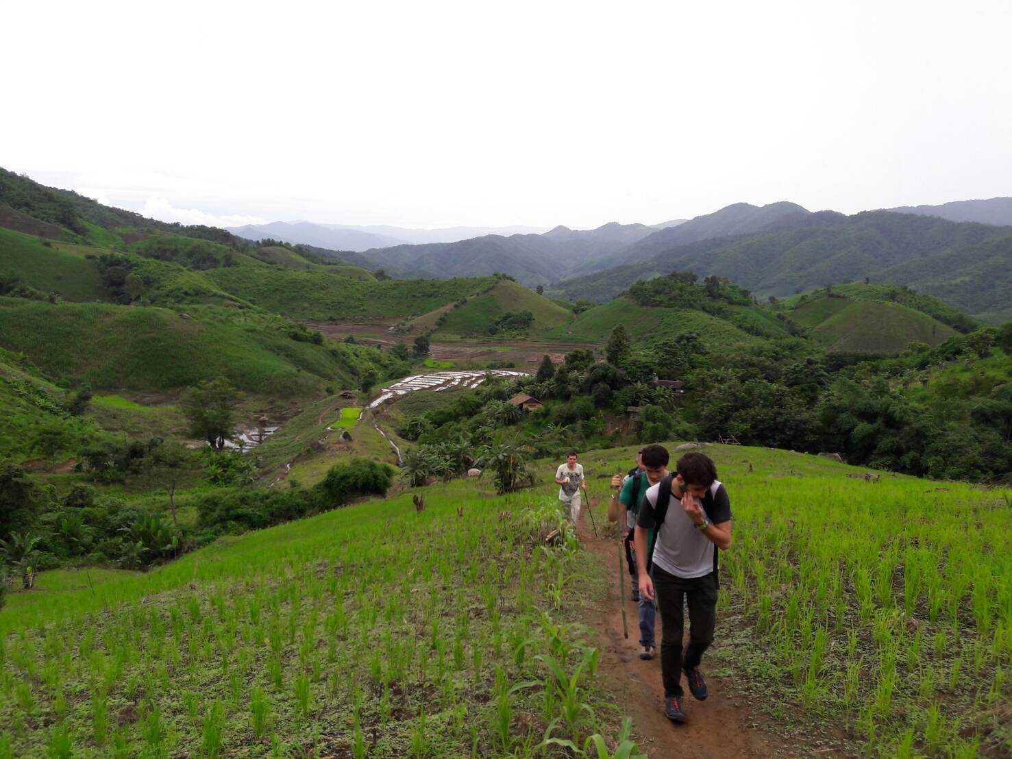 One Day Chiang Rai Trek Only Walk