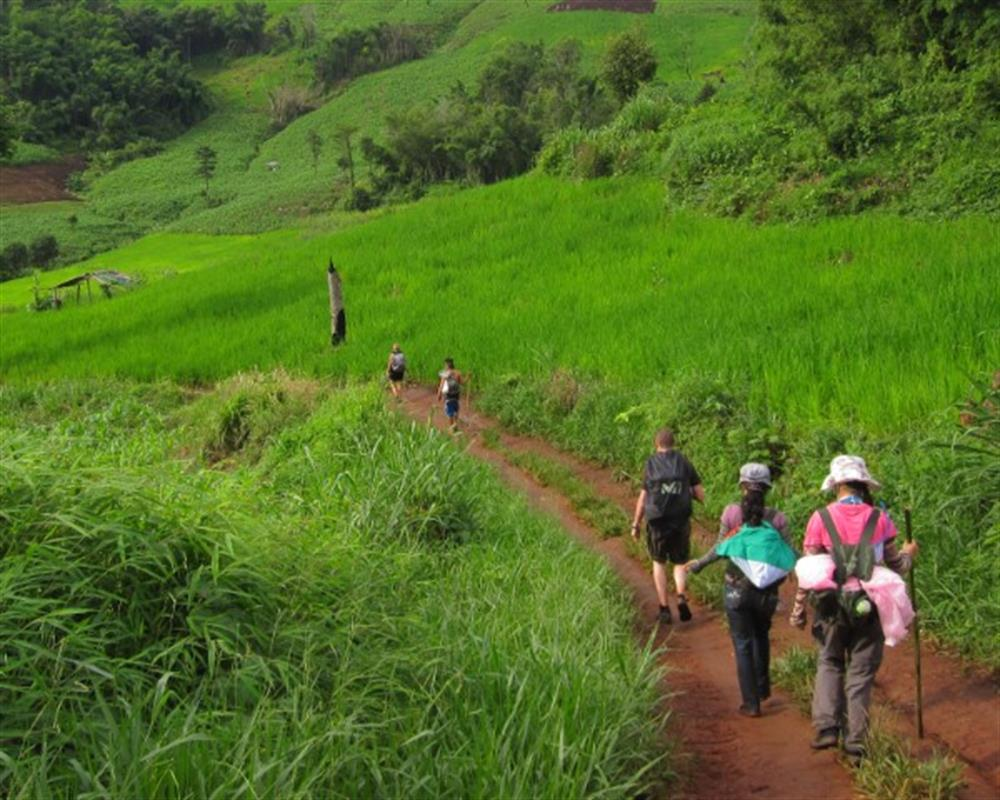 One Day Chiang Rai Trek Only Walk