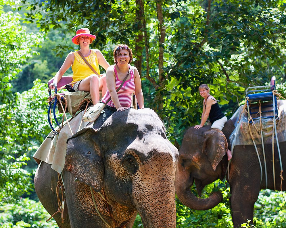 Elephant Trekking and Canoeing to See Stunning Scenery