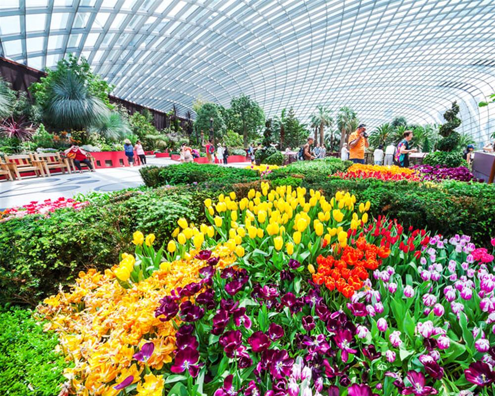 1 Day Hopper Pass and Flower Dome & Cloud Forest