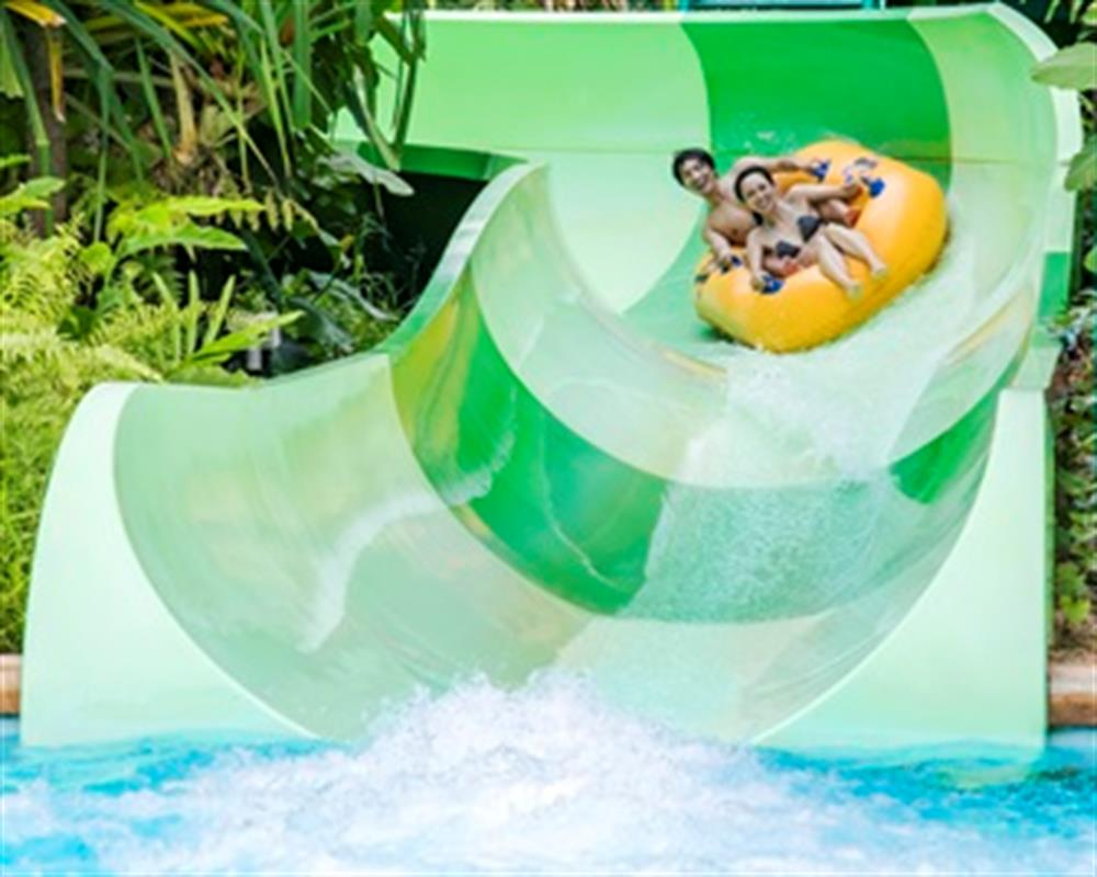 Adventure Cove Waterpark Day Pass
