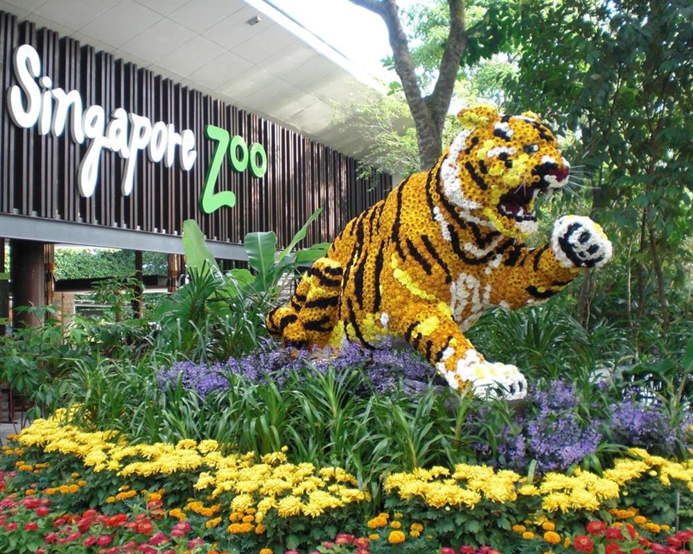 Admission Park Hopper Plus 4 IN 1 Singapore