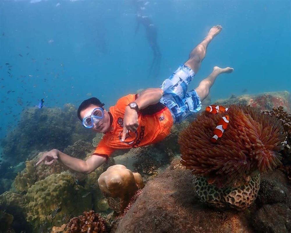 Nemo Island Snorkeling Tour by Speedboat +Tiger Park
