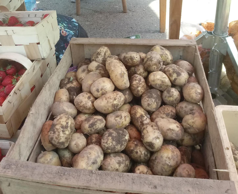 ziemniaki zdjecie