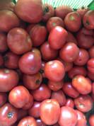 Pomidory ekologiczne