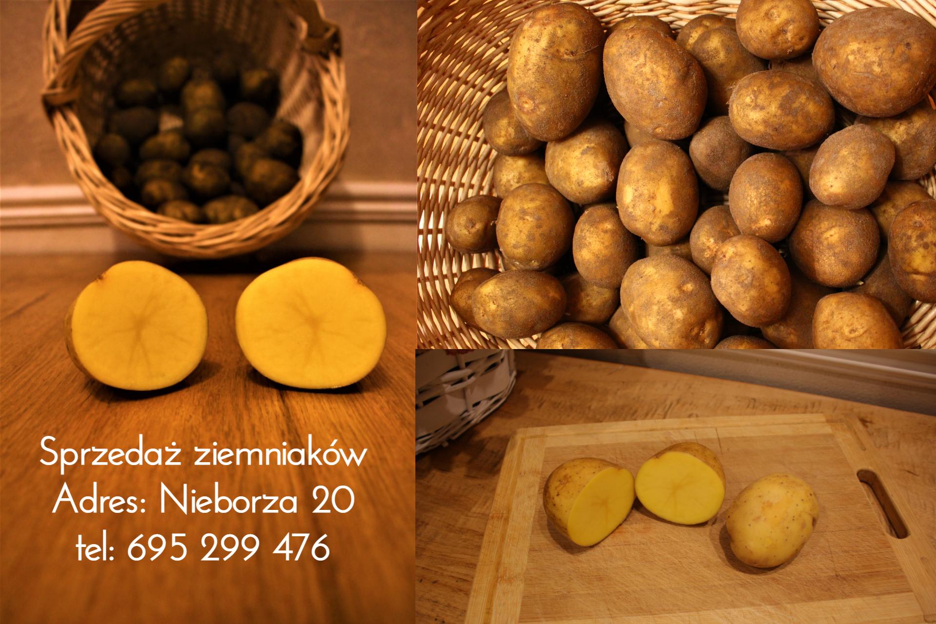 Ziemniaki sprzedaż