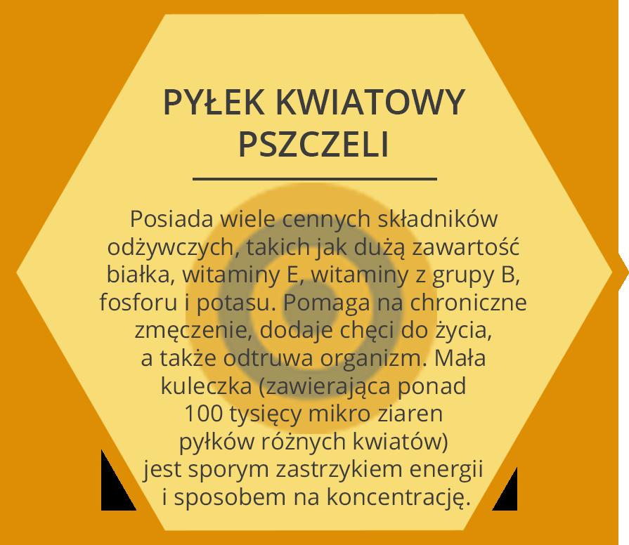 pylek_pszczeli2