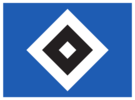 Hamburger Sportverein e.V. (HSV)