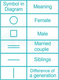 Common Diagram 28.01.2020 D3