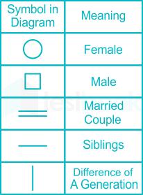 Symbol Diagram Blood Relation