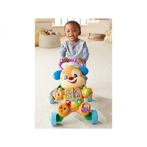 Fisher-Price Εκπαιδευτική Στράτα Σκυλάκι Smart Stages FTC66  Αγόρι, Κορίτσι 12-24 μηνών, 6-12 μηνών Fisher-Price