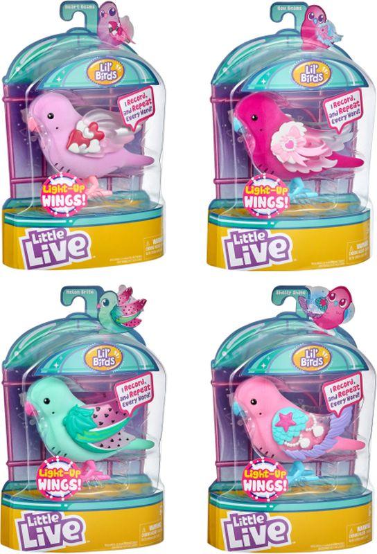 Little LIVE PETS  Little Live Pets Πουλάκι Cocoritos-4 Σχέδια LPB07000 Κορίτσι 5-7 ετών, 7-12 ετών