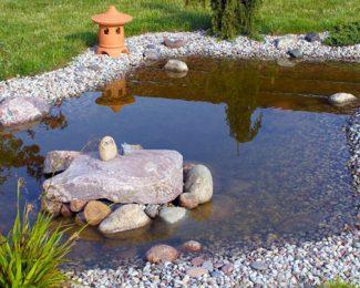 L'entretien d'un bassin extérieur