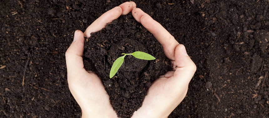 Comment bien doser les engrais naturels ?