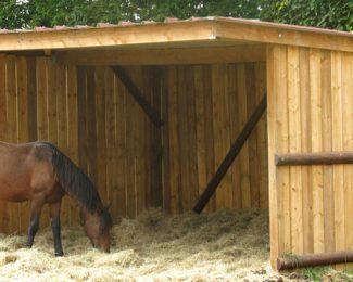 L'hiver approche : fabriquez des abris pour les animaux de votre jardin