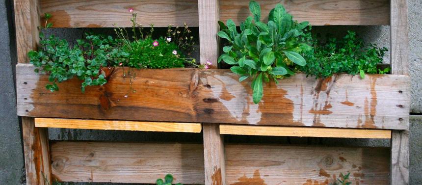 DIY terrasse et balcon : fabriquez votre jardinière en palette