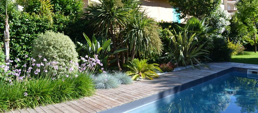 Les plantes à mettre autour de la piscine