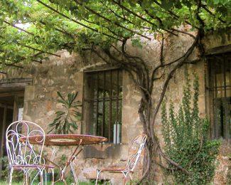 Pergola, l'endroit idéal pour planter une vigne