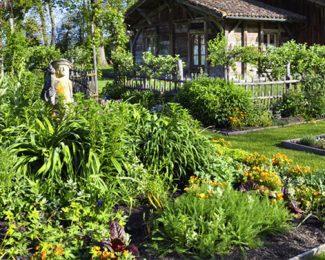 Cultiver un jardin des aromates avec ses enfants