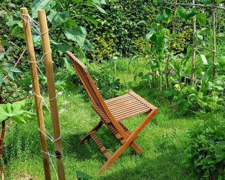 Un jardin en permaculture : en quoi cela consiste ?