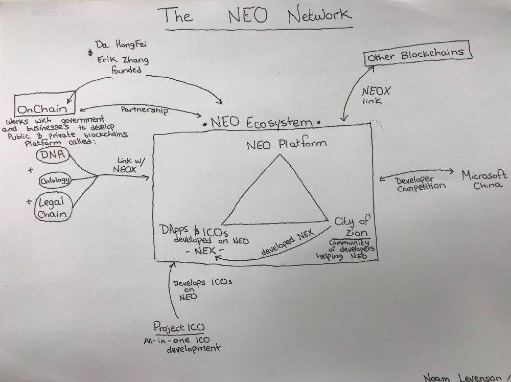 Как работает криптовалюта NEO