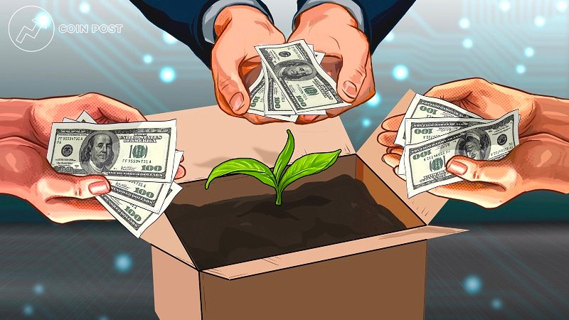 Конгломерат Citigroup вложил миллионы долларов в аналитический стартап Amberdata