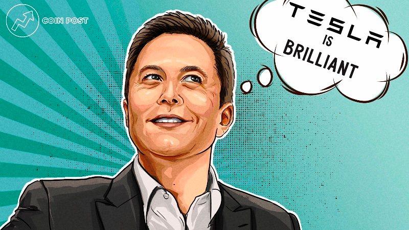 Илон Маск провел голосование о продажах автомобилей Tesla в Dogecoin