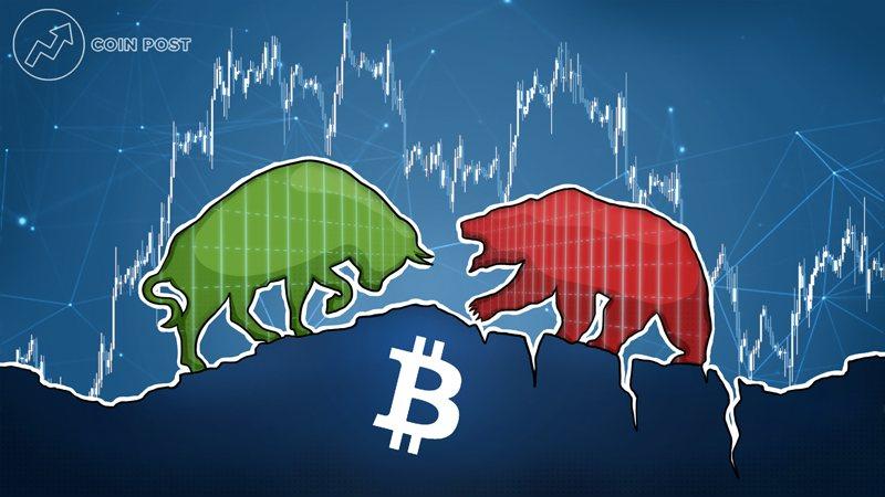 Бычий и медвежий рынок биткоина