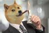 Преимущества Dogecoin