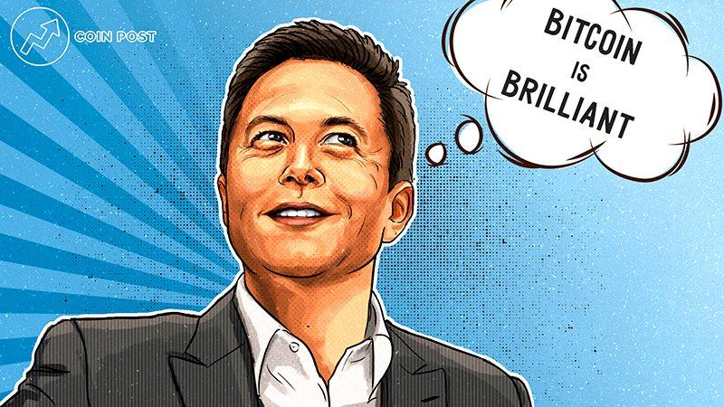 Илон Маск заявил, что он лично владеет биткоином и две его компании тоже