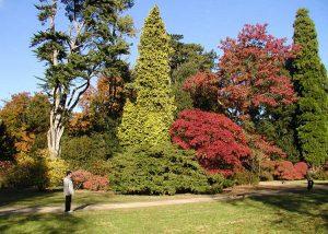 Arboretum - tempat pre-wedding di malang