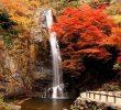 10 Tempat Wisata Musim Gugur di Jepang Paling Romantis