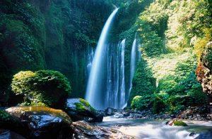 Wisata Air Terjun Tiu Kelep Lombok yang Wajib Dikunjungi