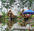 Wisata Dusun Bambu Lembang Bandung yang Wajib Dikunjungi