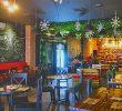 4 Kafe Kucing di Bogor yang Wajib Dikunjungi