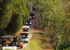 Hal Menarik di Kampoeng Kopi Banaran