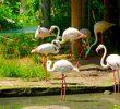 8 Tempat Wisata Study Tour di Bali yang Edukatif