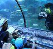 35 Tempat Wisata Anak Sekolah di Jakarta yang Populer