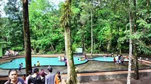 Hutan Wisata Sesaot
